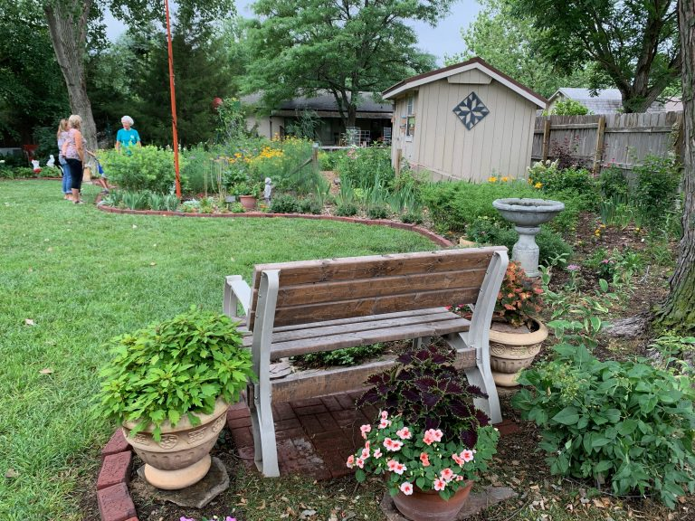 Backyard (mostly) native plant garden in McPherson