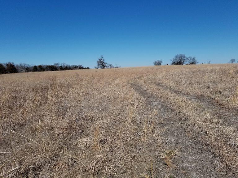 Wintertime Prairie Trail