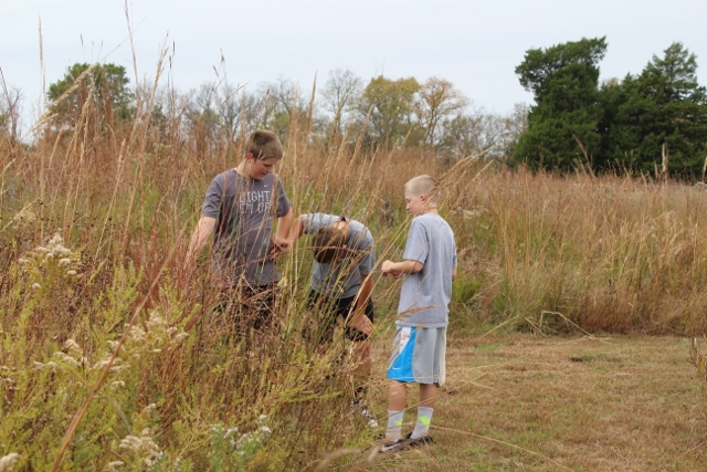 Students taking notes on a restored native prairie
